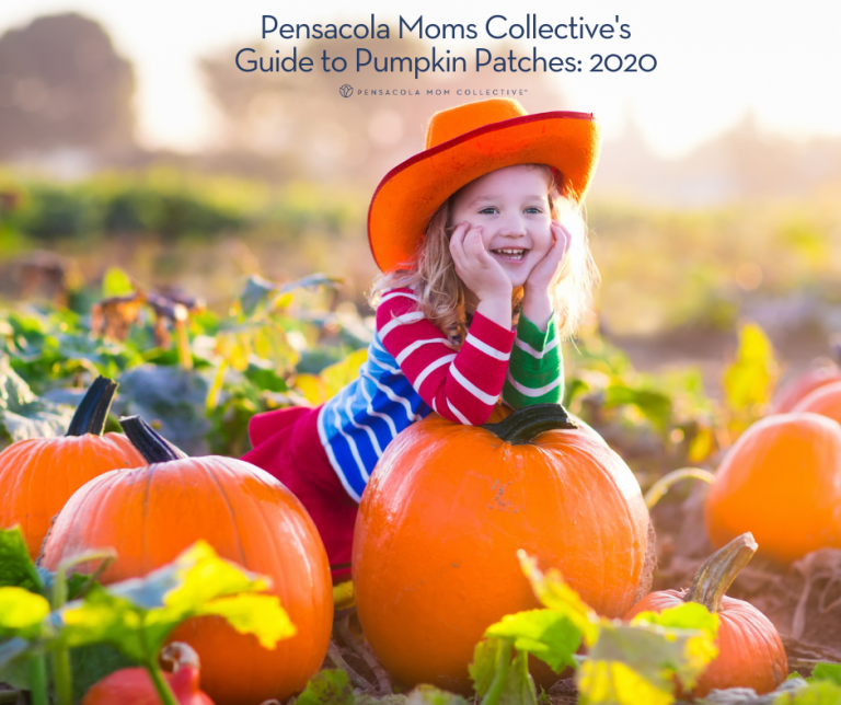 Pensacola Mom Collective Guide to Pumpkin Patches